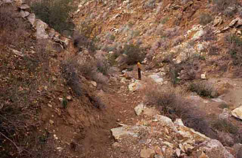 Photo of the California Riding & Hiking Trail as it descends into Plum Canyon