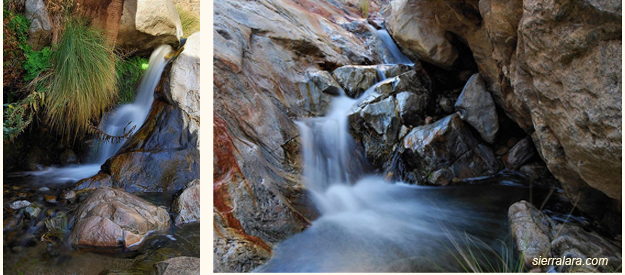 water flowing in palm canyon