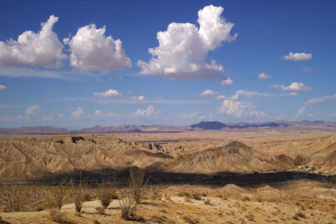 Photo of the Carrizo Badlands from the Carrizo Badlands Overlook showing the Canyon sin Nombre jeep trail, thick mesquite by Carrizo Creek, the Vallecito-Fish Creeek Badlands, and the distant Fish Creek Mountains